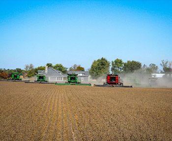 Os números mostram: agronegócio recebe muitos recursos e contribui pouco para o país