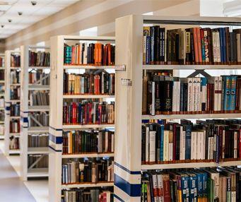 As bibliotecas são pomares do saber